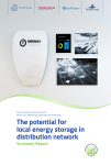 Potential for local energy storage