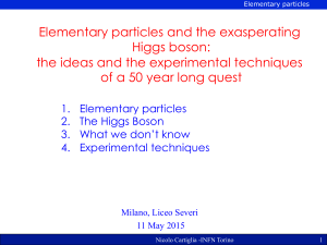 Elementary particles and the exasperating Higgs boson: the ideas