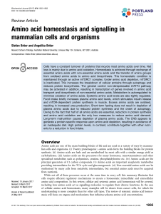 Amino acid homeostasis and signalling in mammalian cells and