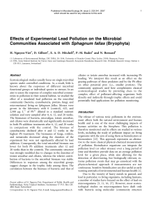 Effects of Experimental Lead Pollution on the Microbial