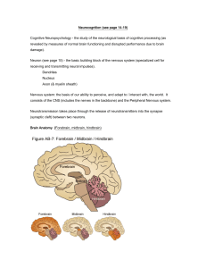 Kellogg Chapter 1. Introduction (Neurological structures)