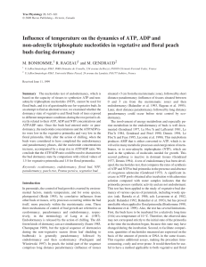 Influence of temperature on the dynamics of ATP, ADP and non