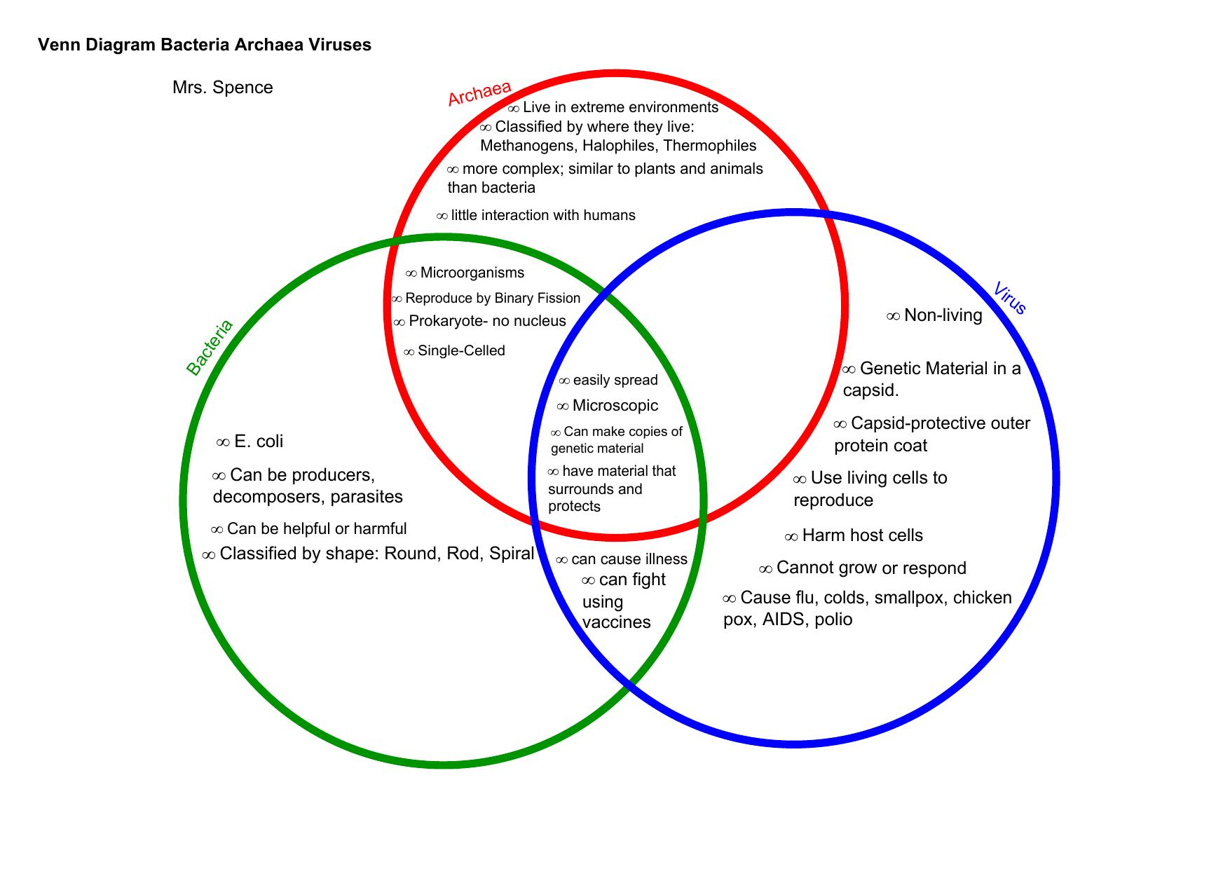29 Bacteria And Viruses Venn Diagram