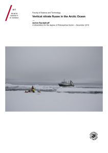 Vertical nitrate fluxes in the Arctic Ocean