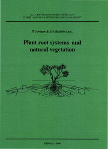 Plant root systems and natural vegetation