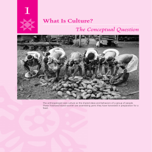 What Is Culture? The Conceptual Question