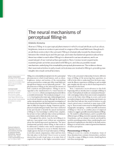 The neural mechanisms of perceptual filling-in