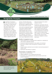 Revegetation Principles