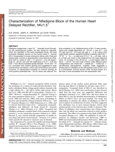 Characterization of Nifedipine Block of the Human Heart Delayed