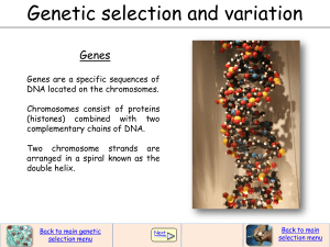 Genetic selection and variation