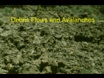 Debris Flows and Avalanches