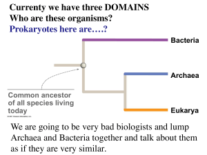 Currenty we have three DOMAINS Who are these organisms