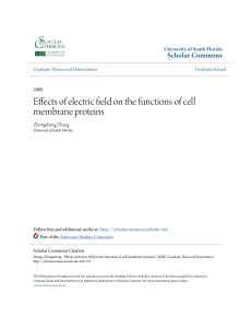 Effects of electric field on the functions of cell membrane proteins
