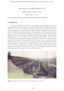 RMT Signature of the Rhineland Brown Coal I. Introduction