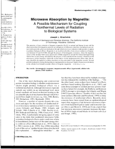 Microwave Absorption by Magnetite: A possible