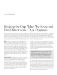 Bridging the Gap: What We Know and Don`t Know about Dual