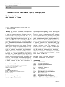 Lysosomes in iron metabolism, ageing and apoptosis