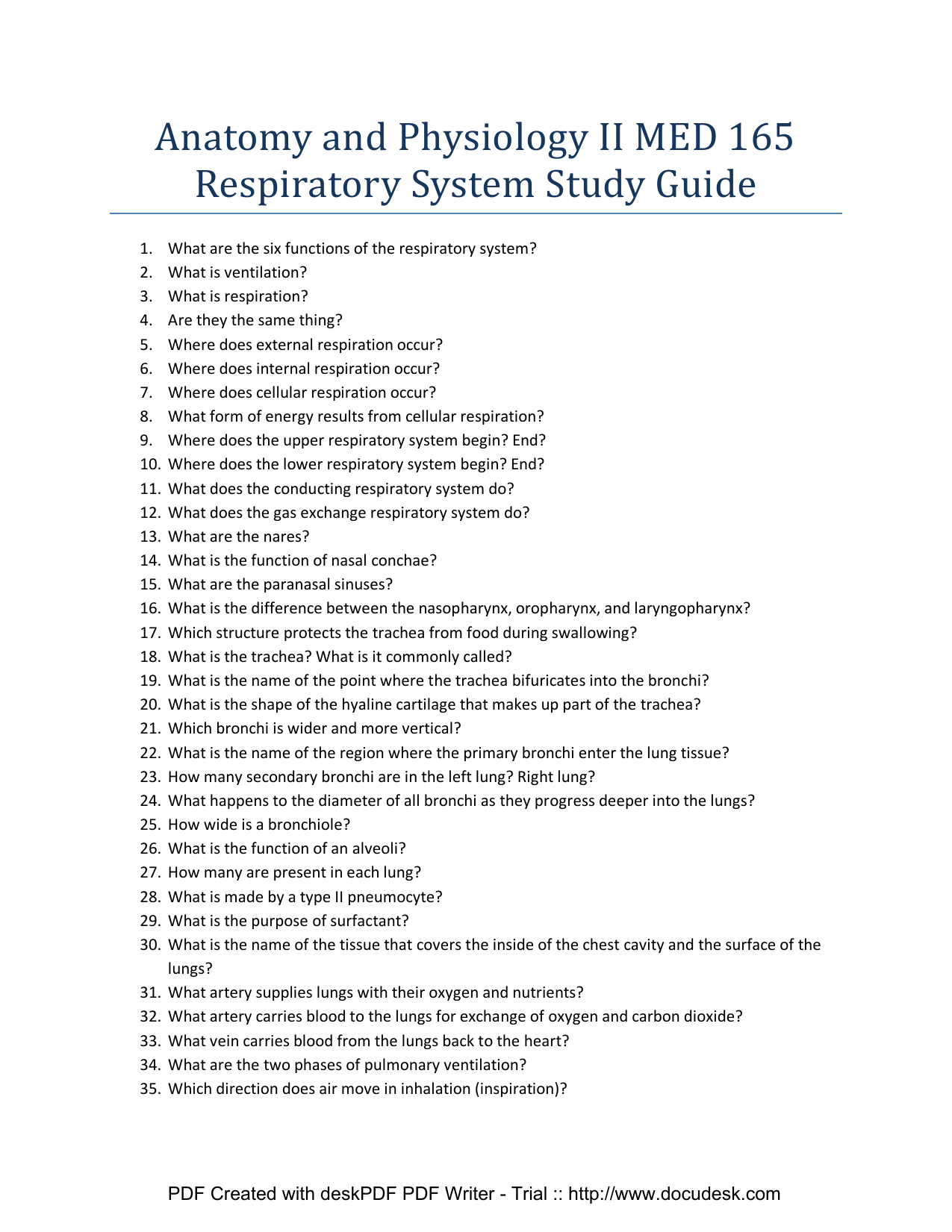 Beste Anatomy And Physiology Respiratory System Study Guide Ideen ...