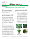Leafy Greens - University of Maryland Extension