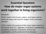 Essential Question: How do major organ systems work together in