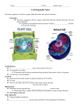 Cell Organelle Notes