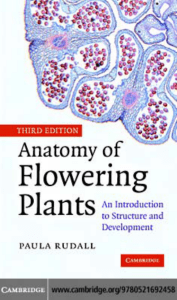 Anatomy of Flowering Plants: An Introduction to Structure and