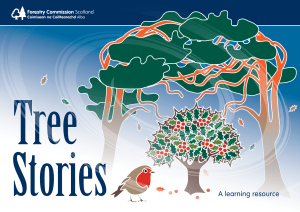 Tree Stories - Forestry Commission