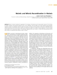Meiotic and Mitotic Recombination in Meiosis