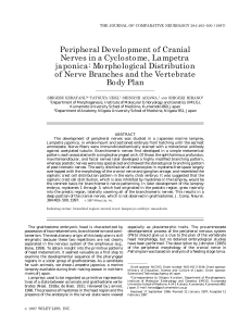 Peripheral Development of Cranial Nerves in a Cyclostome