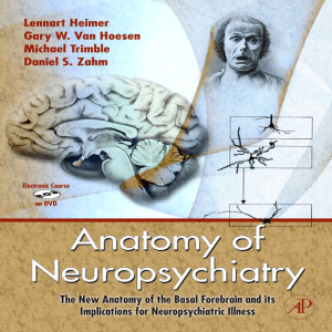 Anatomy of Neuropsychiatry : The New Anatomy of the
