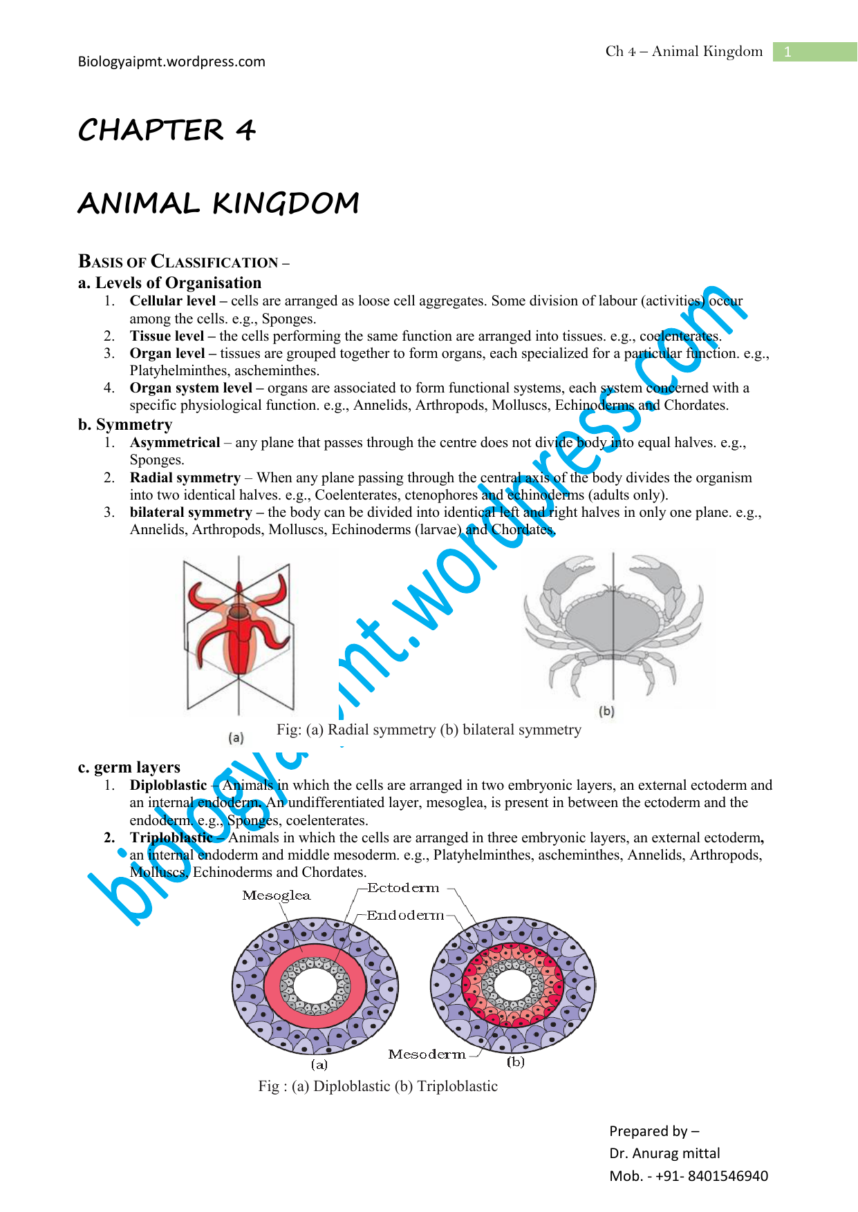Chapter 4 Copy Wordpresscom Phylum Cnidaria Worksheet Also Hydra Anatomy Diagram Answers Along