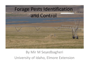 Forage Pests Identification and Control