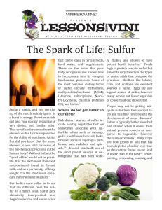 The Spark of Life: Sulfur