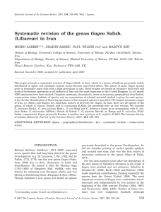 Systematic revision of the genus Gagea Salisb.(Liliaceae) in Iran