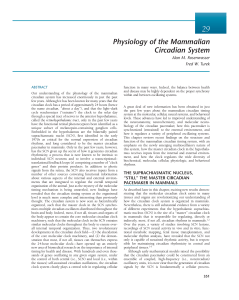 Physiology of the Mammalian Circadian System