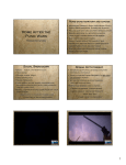 Roman Dictators PowerPoint Handout