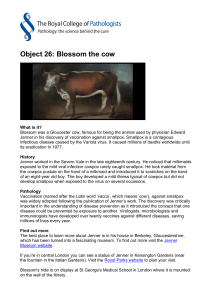 Object 26: Blossom the cow