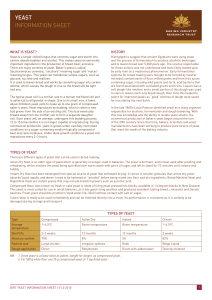 YEAST INFORMATION SHEET