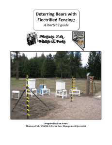 Deterring Bears with Electrified Fencing