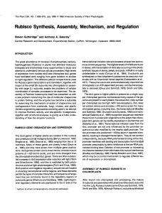 Rubisco Synthesis, Assembly, Mechanism, and Regulation