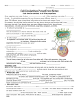 Cell Similarities Notes