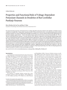 Properties and Functional Role of Voltage