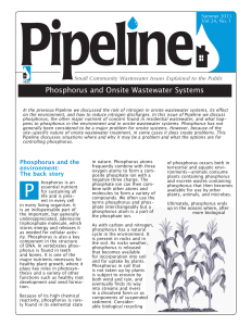 Phosphorus and Onsite Wastewater Systems
