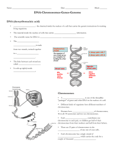 DNA-Chromosomes-Genes-Genome student notesheet