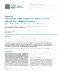 life cycle, cell wall and cell signal transduction