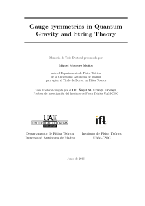 Gauge symmetries in Quantum Gravity and String Theory