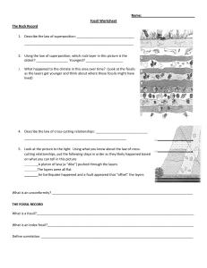 fossils worksheet answer key