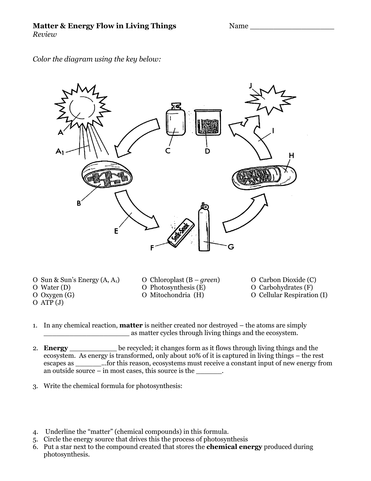 Chemistry Of Living Things Worksheet Answers