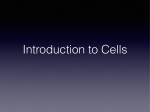 Introduction to Cells.key