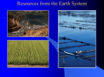 Resources from the Earth System